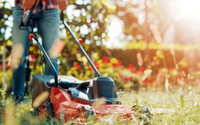 Prepping Your Lawn for Winter
